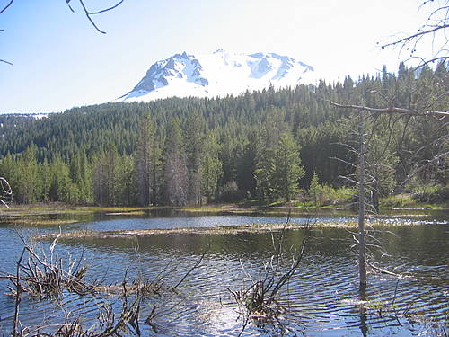 Lassen Volcanic National Park 113