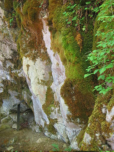 Marble and Moss Cliff