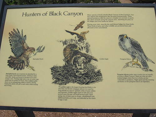 Hunters of Black Canyon