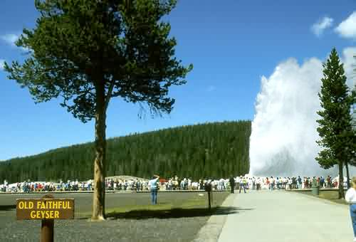 Old Faithful Geyser 1
