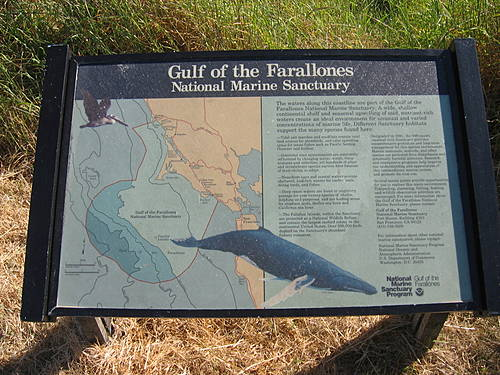 Gulf of the Farallones