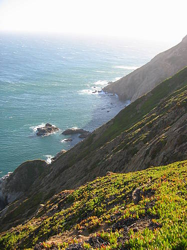Point Reyes South Side
