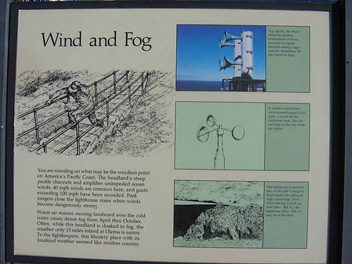 Wind and Fog