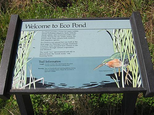 Welcome to Eco Pond