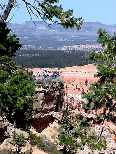Bryce Point Overlook