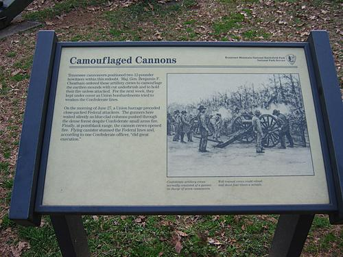 Camouflaged Cannons