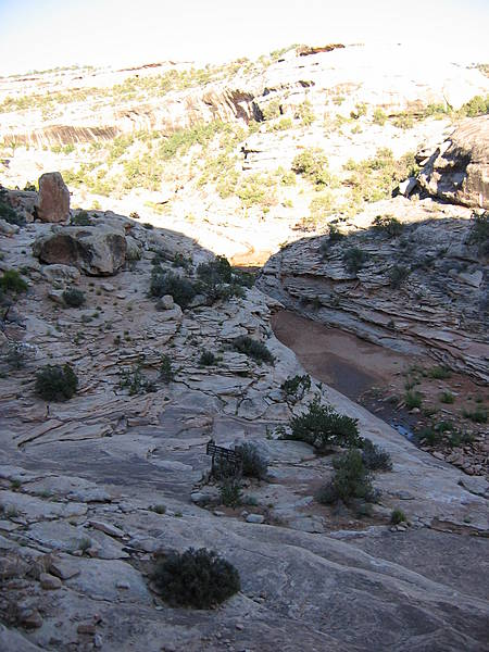 Armstrong Canyon Near Owachomo Bridge