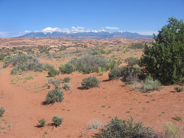 Arches National Park 182