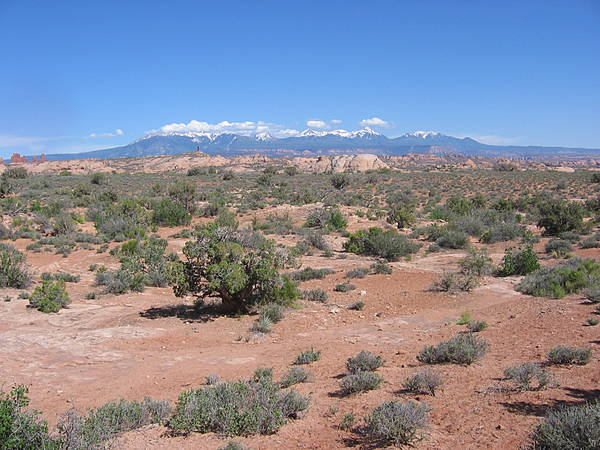 Arches National Park 195