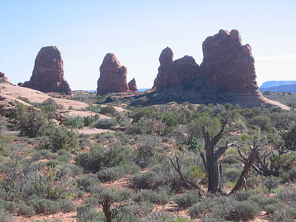 Arches National Park 250
