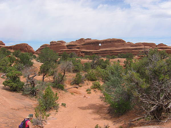 Along Primitive Trail - Devils Garden