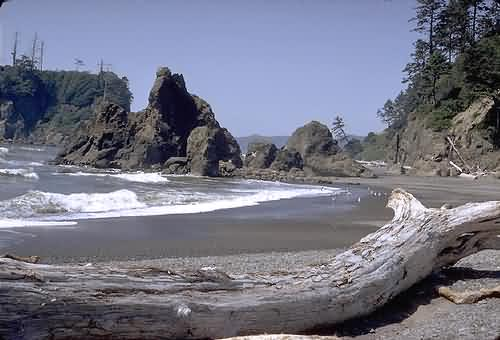 Olympic National Park 3