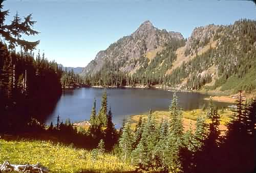 Olympic National Park 5