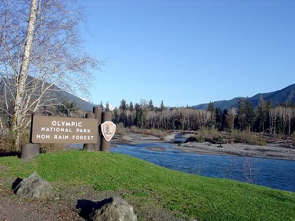 Hoh River Valley Entrance Sign