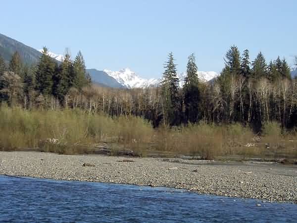 Mount Olympus - Hoh River Valley