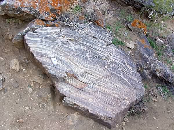 Banded Gneiss - Ryan Mountain Trail