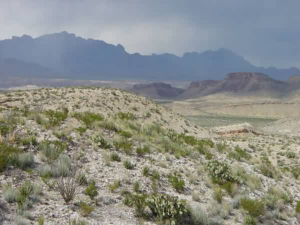 Chisos Mountains & Chihuahuan Desert