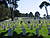 San Francisco National Military Cemetery