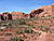 Arches National Park 260